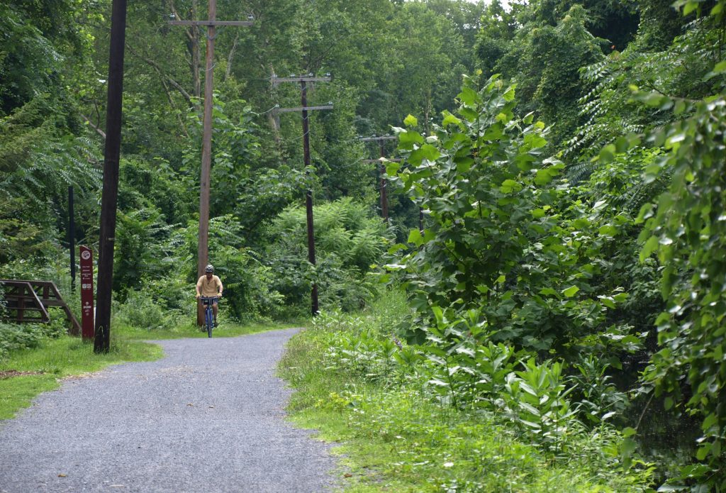 A shot of a biker and of trees on the D&L Trail in Bethlehem, PA.