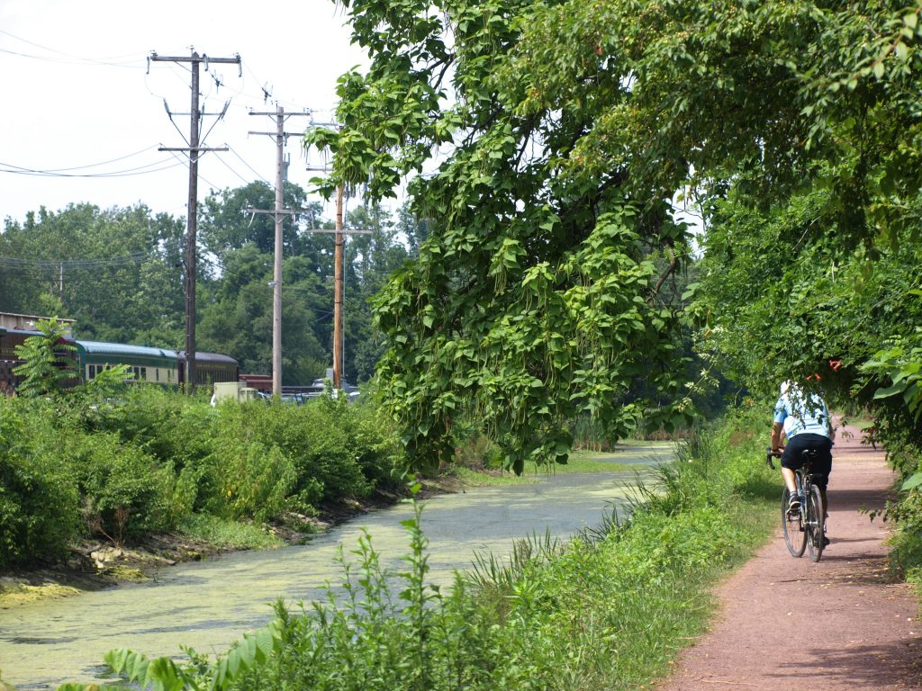 A bike rider on the D&L Trail section in New Hope, PA