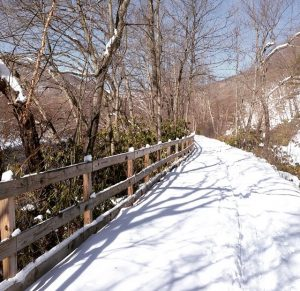D&L_Trail_Winter_Lehigh_River