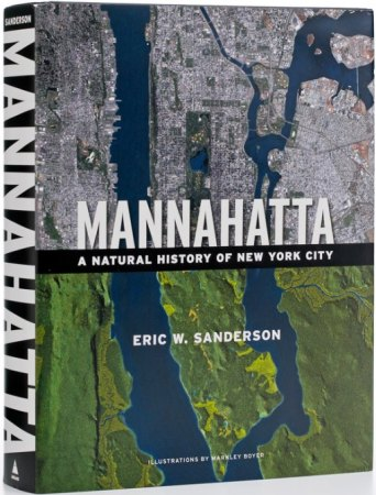 Manhatta pushes the boundaries of historical GIS to another level.