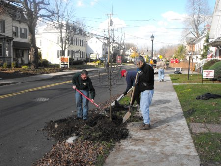 DCNR and TreeVitalize representatives plant one of 65 new trees